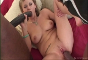 Cindy Foxxx - Big dick