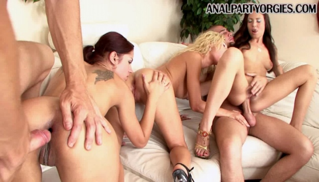 Abbey, Angel Rivas, Brandy and Masha